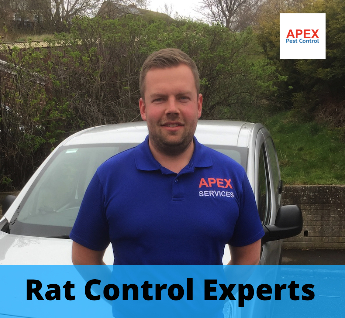 Leeds vermin control and proofing.