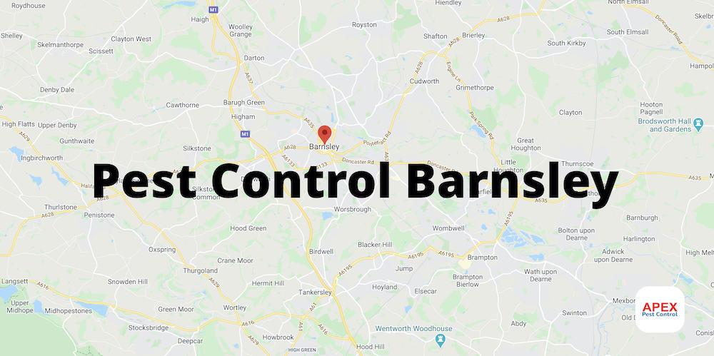 Pest Control Barnsley