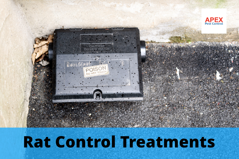 vermin control services