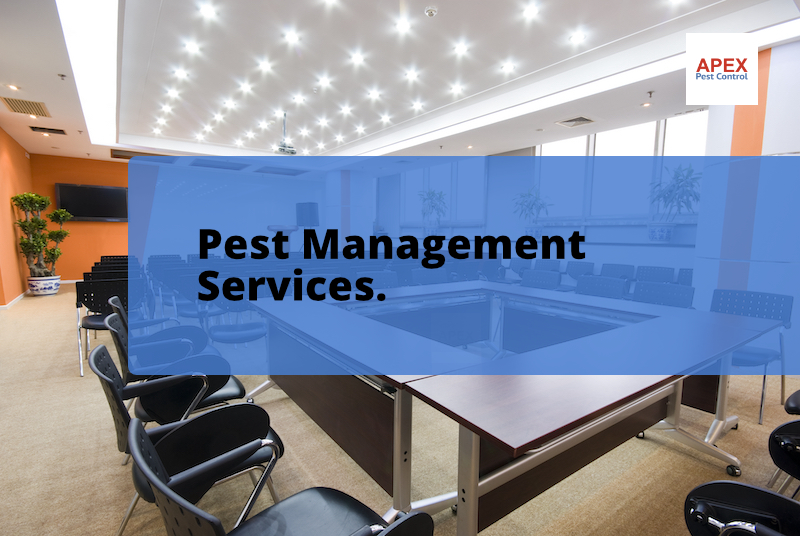 commercial premises