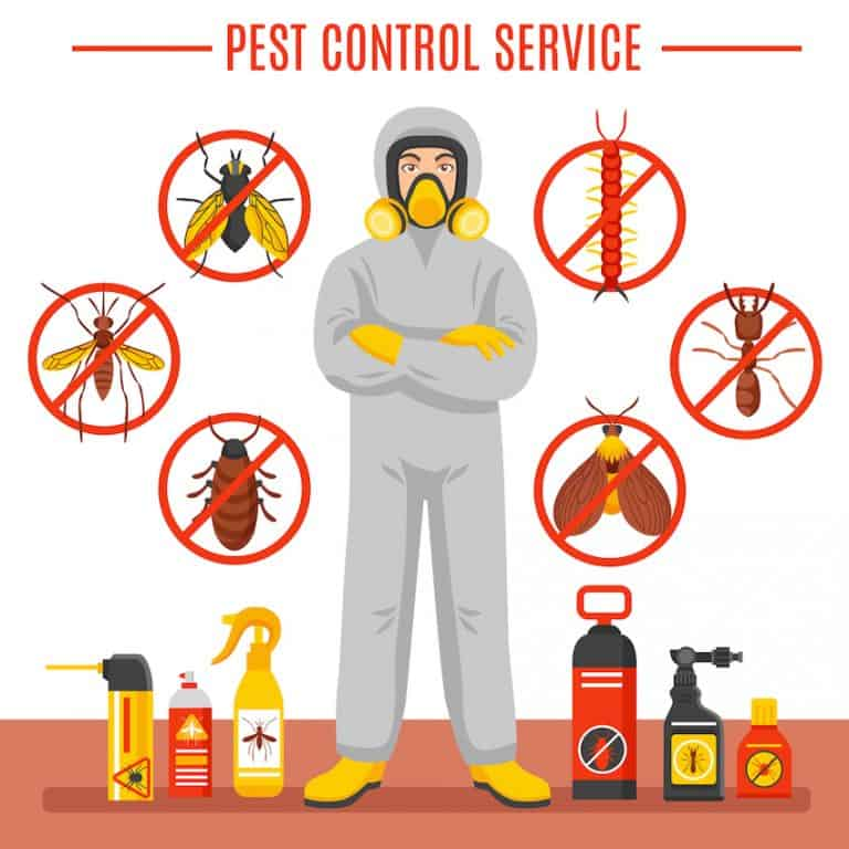 pest control companies in Sheffield