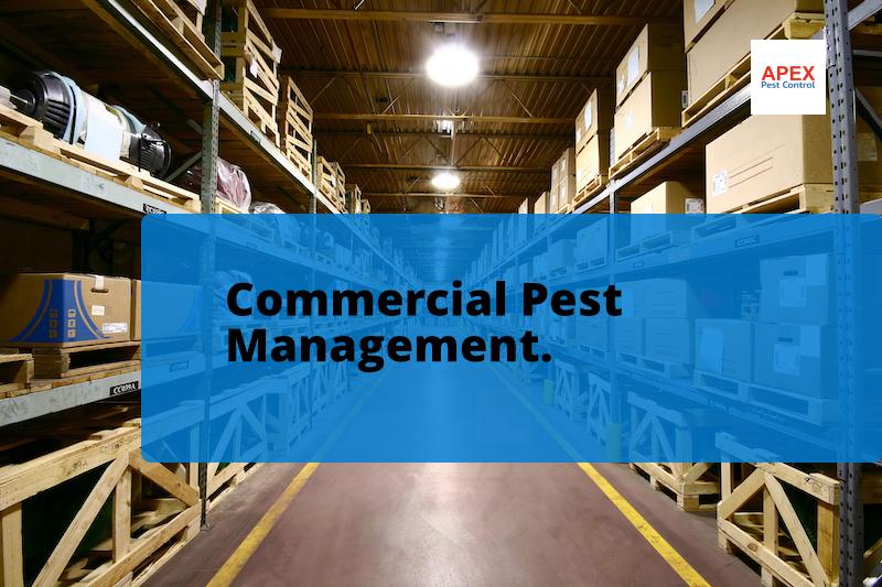 commercial pest management