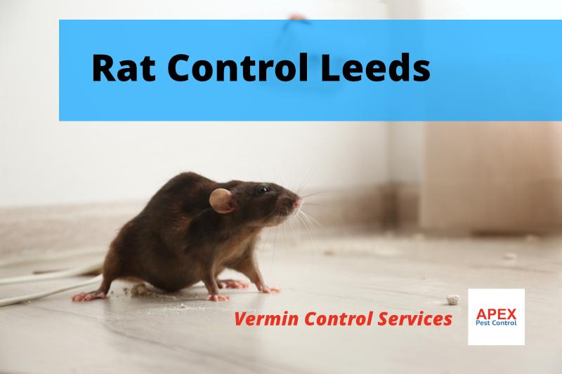 Leeds vermin proofing