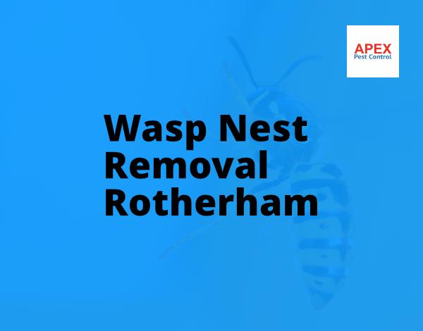 pest control rotherham